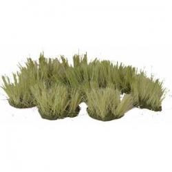S32 Clumps of long green grass
