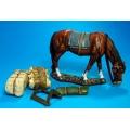 BAL09 Pack Horse #5