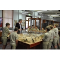 AL14 Museum Curator with schoolkids