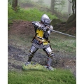 CS001019 - French Knight Sword Wielder