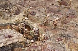 WW04 Trench detail